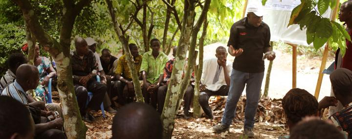 Empowering cocoa farmers through education & training